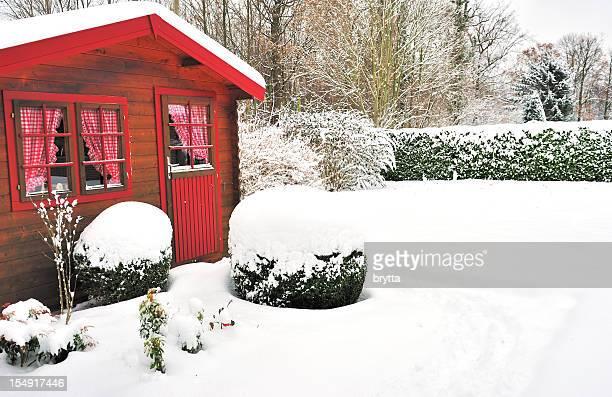 Winter garden mit Holzhaus, buxus Bälle und laurel Hecke