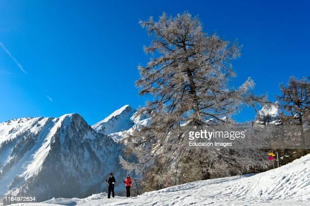 Winter hike in the Pennine Alps Ovronnaz Valais Switzerland