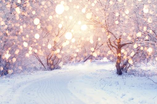 Winter holiday illumination 1063423960