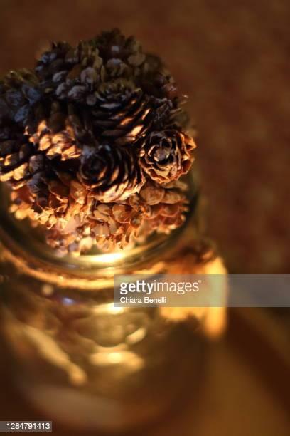 winter home decorations - florence douillet photos et images de collection