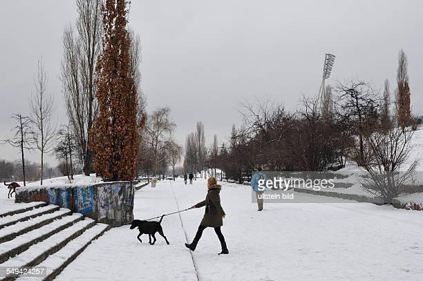 Winter im Mauerpark Strasse Hundebesitzerin beim Gassigehen im Mauerpark