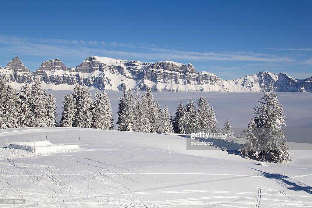 Winter in Alpen  : Stock-Foto