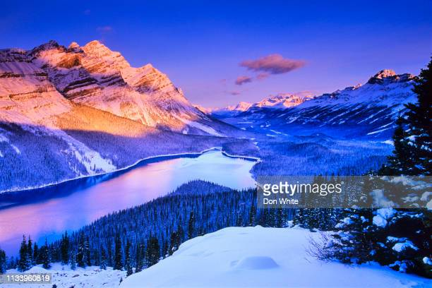 winter in banff national park in alberta canada - lake louise stock pictures, royalty-free photos & images