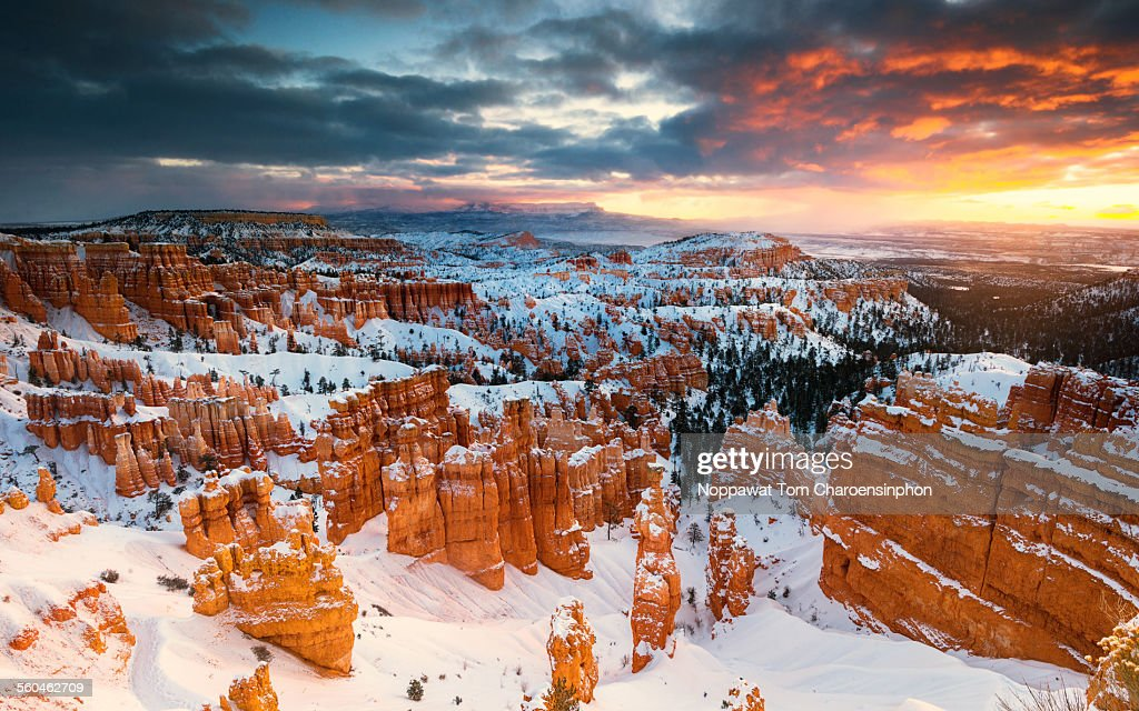 Winter in Bryce Canyon National Park : Stock Photo