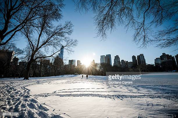 winter in central park - cipriani manhattan stock pictures, royalty-free photos & images