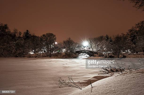 winter in centralpark - cipriani manhattan stock pictures, royalty-free photos & images