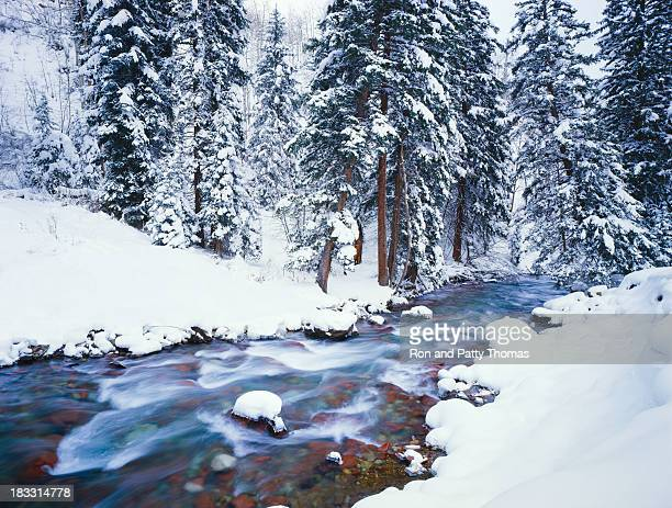 winter in colorado - aspen colorado stock photos and pictures