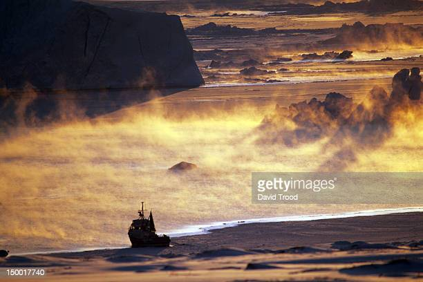 winter in greenland - ilulissat stock-fotos und bilder
