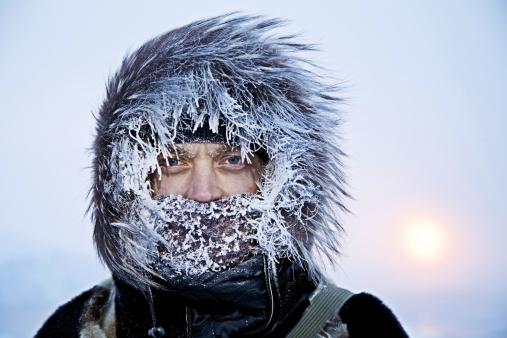 Winter in Greenland - gettyimageskorea