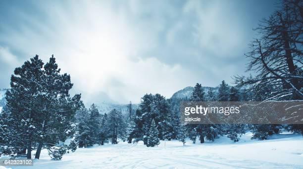 Inverno das montanhas