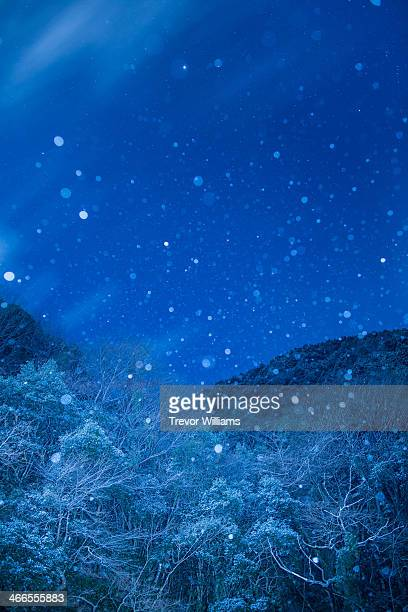 Winter in mountains with snow falling at night