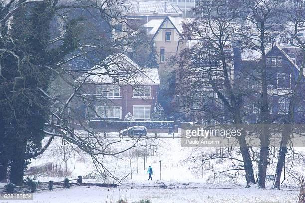 winter in netherlands - 背景に人 ストックフォトと画像