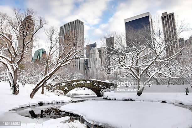 Inverno na cidade de Nova Iorque