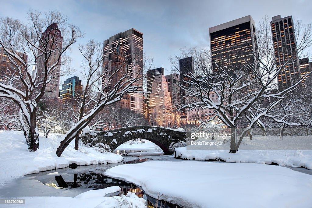 Winter in New York City : Stock Photo