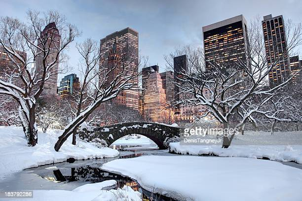 winter in new york city - central park stock pictures, royalty-free photos & images