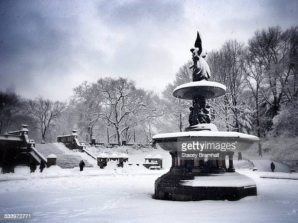 winter in nyc - bethesda maryland stock pictures, royalty-free photos & images