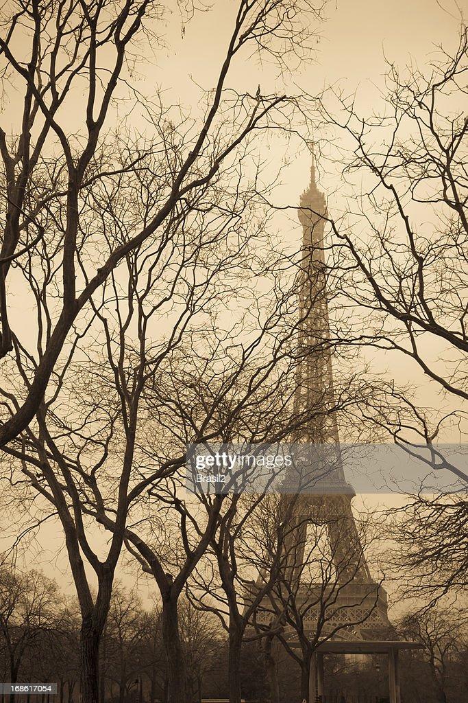 Winter in  Paris : Stock Photo