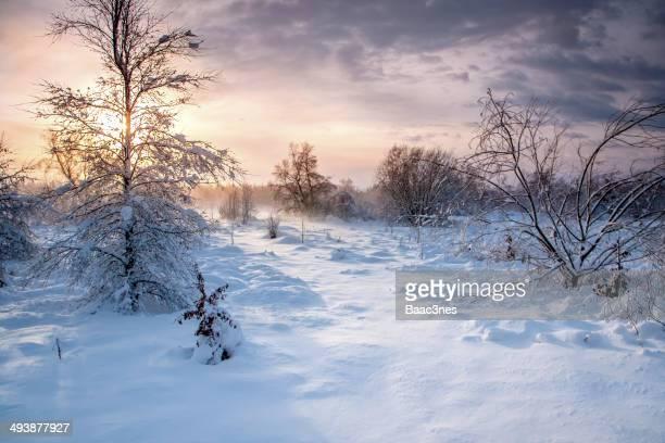 Winter in Stavanger