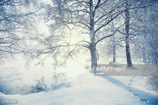 winter in sweden - sweden stock pictures, royalty-free photos & images