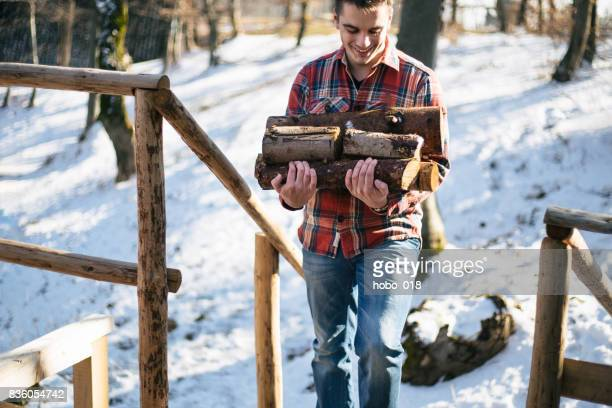 winter is coming - firewood stock pictures, royalty-free photos & images