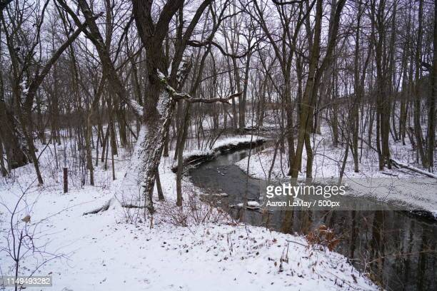 winter land hobbs woods - new hampshire stock pictures, royalty-free photos & images