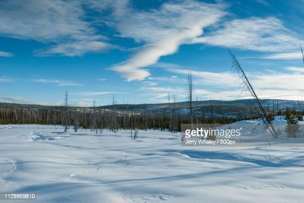 Winter landscape against cloudy sky