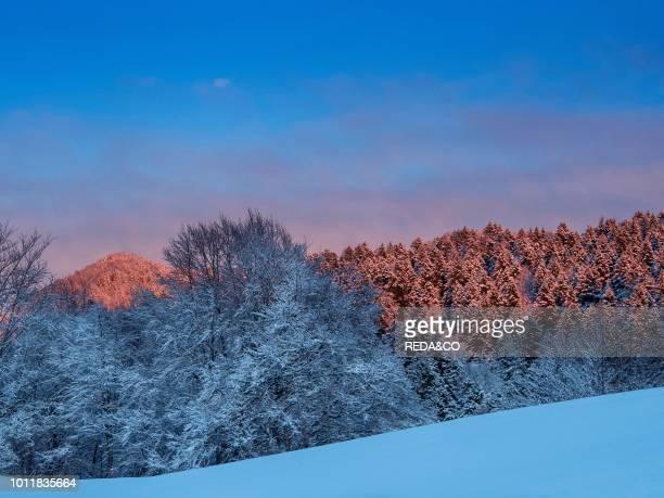 Winter landscape at Lessinia Monti Lessini Vallagarina Trentino Italy Europe