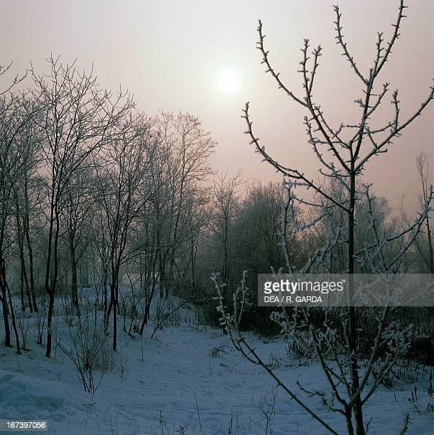 Winter landscape at sunset Piedmont region Italy