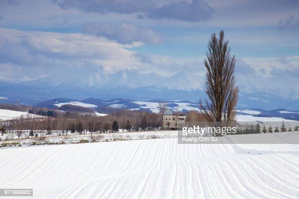 winter landscape, biei, hokkaido, japan - biei town stock pictures, royalty-free photos & images
