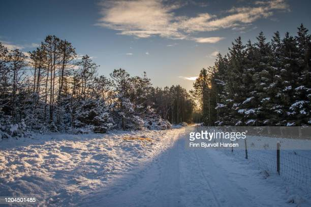 winter landscape from lista in norway - finn bjurvoll stock pictures, royalty-free photos & images
