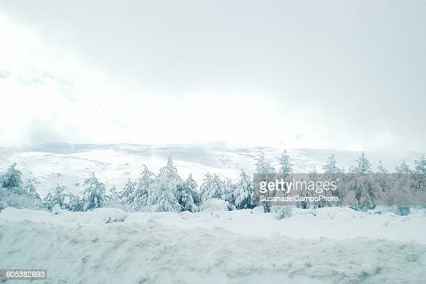 Winter landscape, Granada, Andalucía, Spain