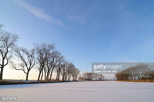 """winter landscape in the ijsseldelta - """"sjoerd van der wal"""" stock pictures, royalty-free photos & images"""