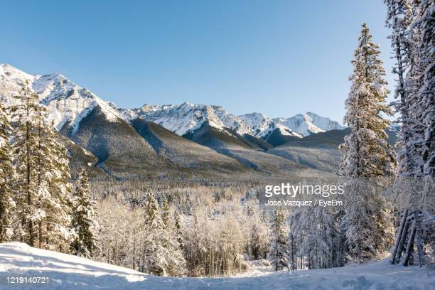 winter landscape in the mountains - kananaskis country stock pictures, royalty-free photos & images