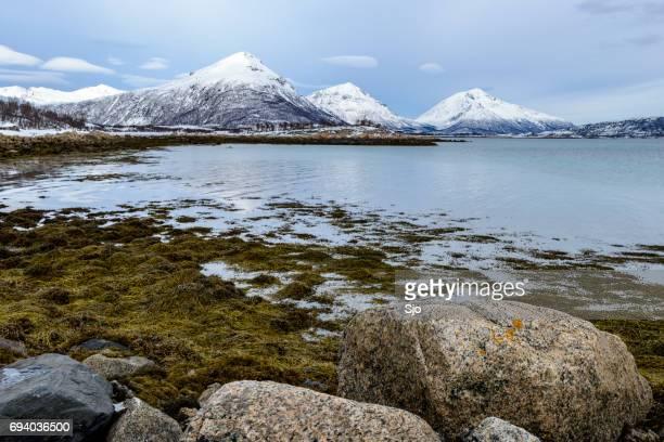 "winter landscape in vesteralen  archipelago in nordland county, norway - ""sjoerd van der wal"" or ""sjo"" stock pictures, royalty-free photos & images"