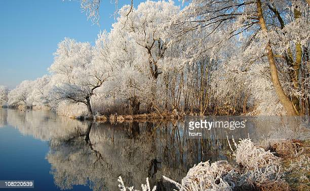 冬の川の風景