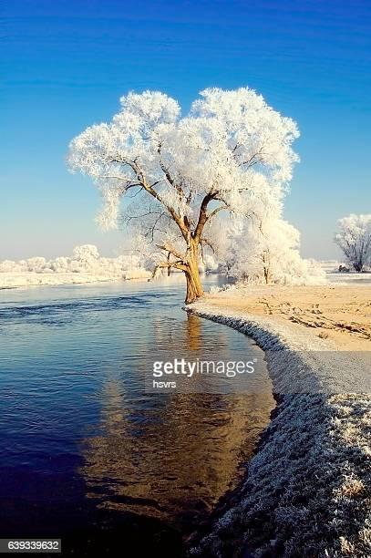 winter landscape of Havel river