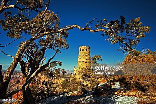 Winter landscape of the Desert View Tower in Grand Canyon National Park framed with tree branch. Taken March 2008 American, Arid Climate, Arizona,...