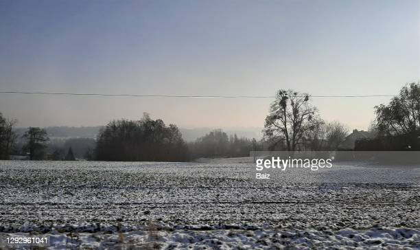 winter landscape of the rural area with trees - poland stock pictures, royalty-free photos & images