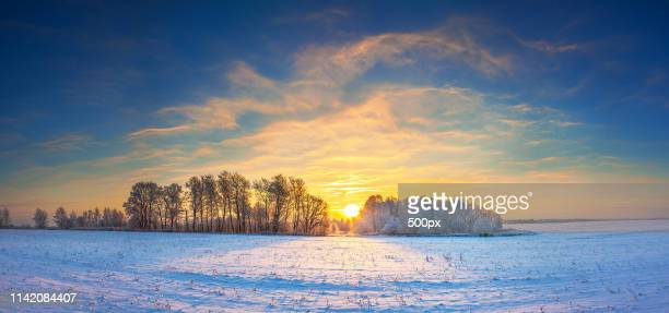 winter landscape panorama with sunrise - december stock pictures, royalty-free photos & images