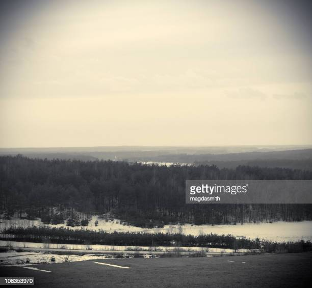 winter landscape - magdasmith stock pictures, royalty-free photos & images