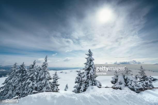 winter landscape - shack stock pictures, royalty-free photos & images