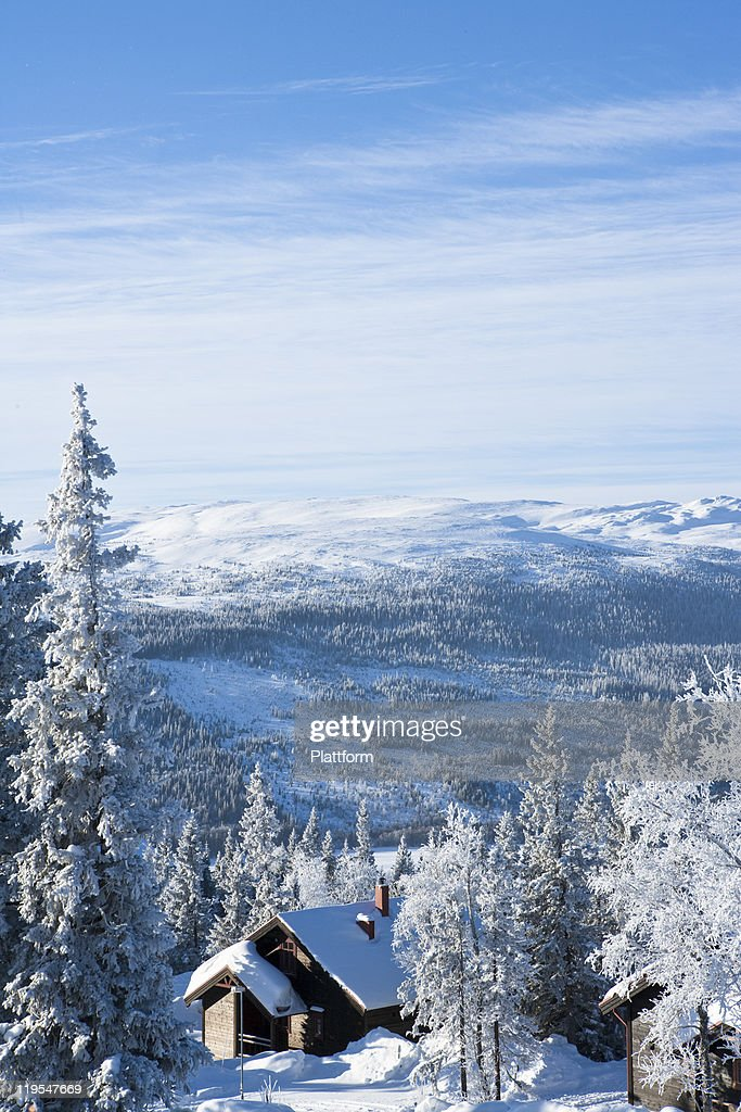Winter landscape : Stock Photo