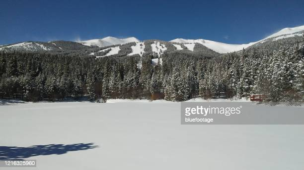 winter landscape - bluefootage stock pictures, royalty-free photos & images