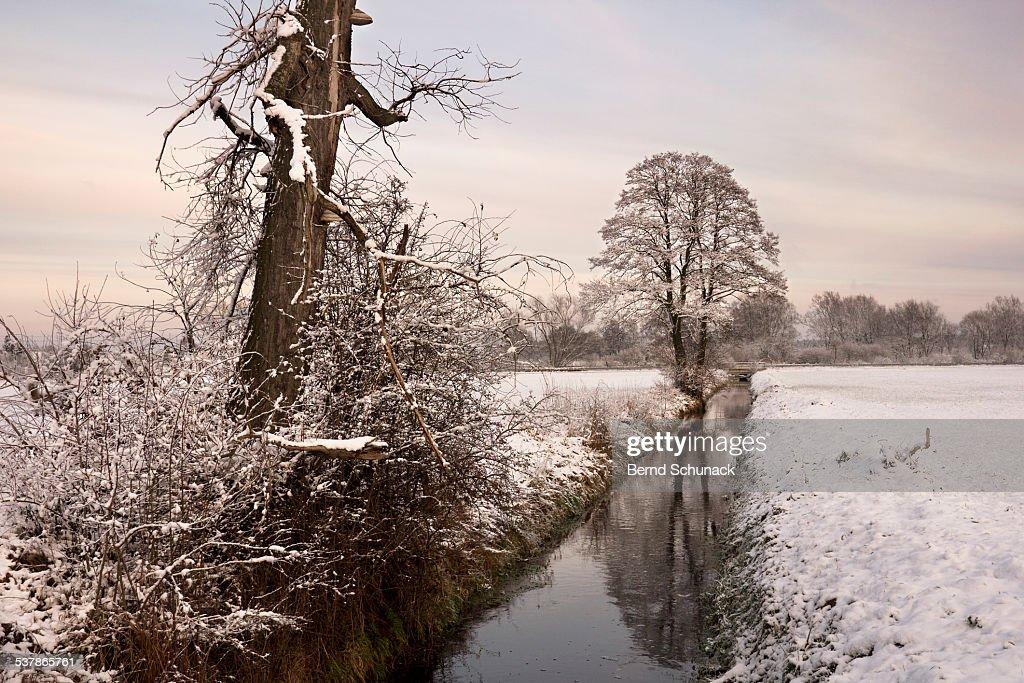 Winter Landscape : Stock-Foto
