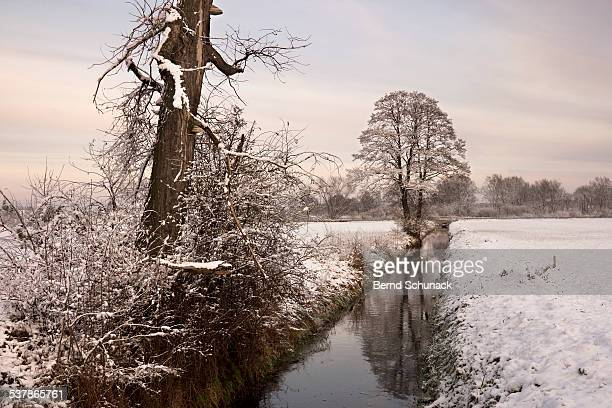 winter landscape - bernd schunack stock pictures, royalty-free photos & images