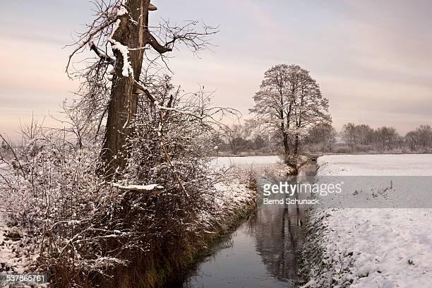winter landscape - bernd schunack stockfoto's en -beelden