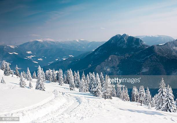 winter landscape - deep snow stock pictures, royalty-free photos & images