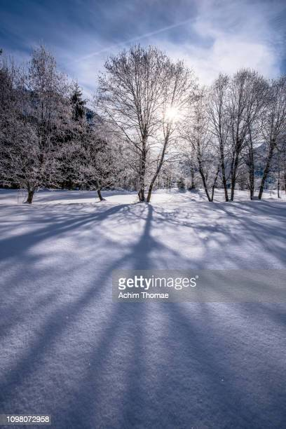 winter landscape, tyrol, austria - sonnig stock pictures, royalty-free photos & images