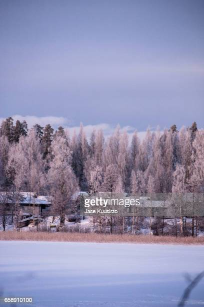 winter landscape view across a frozen lake in finland - jyväskylä stock photos and pictures