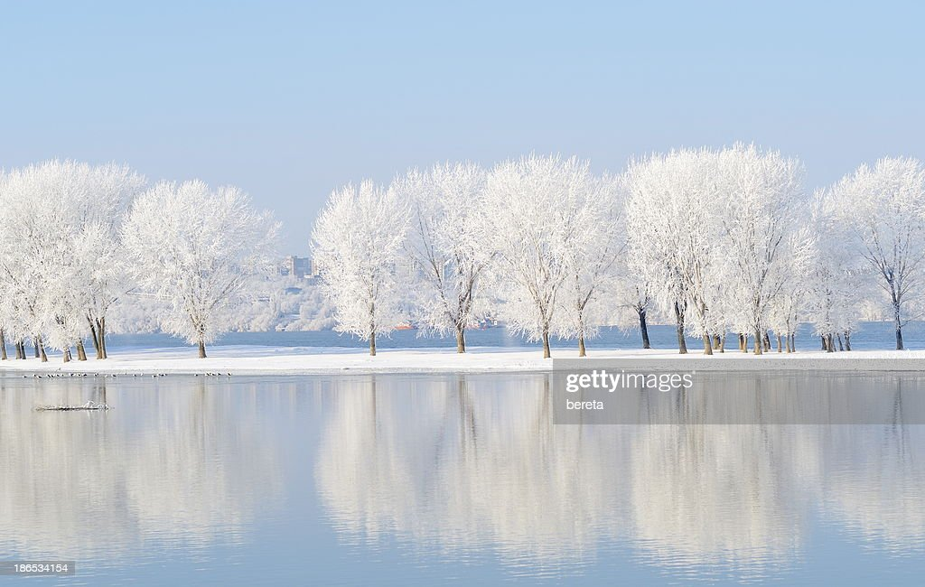 winter landscape with beautiful reflection in the water : Stock Photo